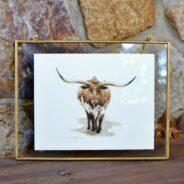 "Release #9: ""Texas Longhorn"""